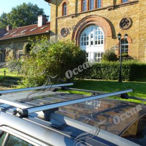 Universele dakdrager 120/130cm. Voor auto's met open dakrail